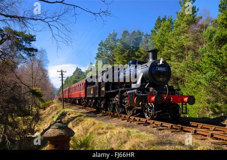 Image Result For Steam Boiler Mt Hr