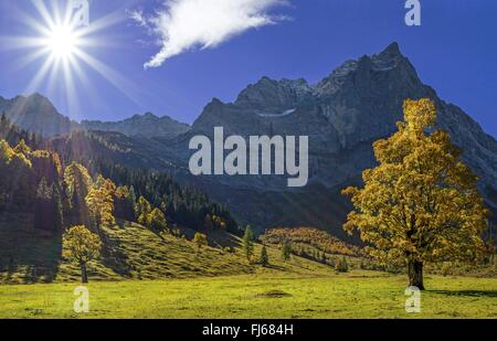 view over the Large Ahornboden in direction of the Eiskarlspite group at sunrise, Austria, Tyrol, Karwendel Mountains - Stock Photo