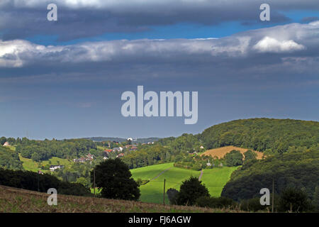 fields, pastures and forest in summer, Germany, North Rhine-Westphalia, Bergisches Land - Stock Photo
