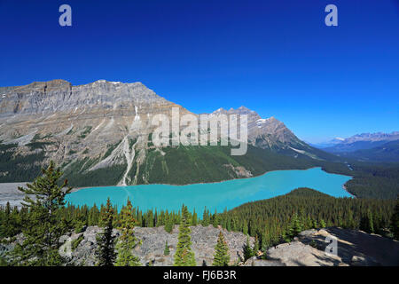 Lake Peyto, Canada, Alberta, Banff National Park - Stock Photo