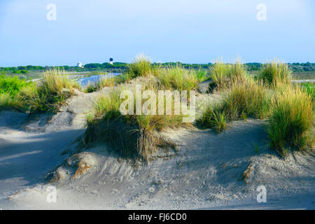 sand dunes of Espiguette and lighthouse Phare de l'Espiguette, France, Gard, Camargue, Grau-du-Roi - Stock Photo