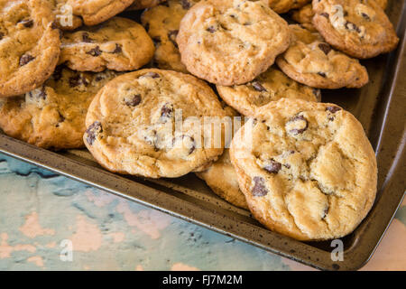 Homemade chocolate chip cookies on baking tray - Stock Photo