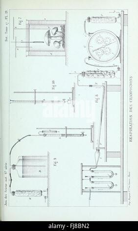Annales des Sciences Naturelles Botaniques (1884) - Stock Photo