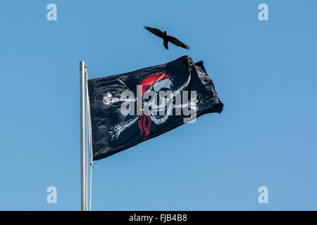 Pirate jolly roger flag flying on flag pole with crow flying - Stock Photo