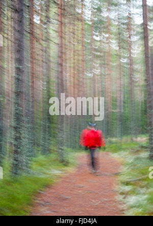 Blurred walk in the forest. Sweden - Stock Photo