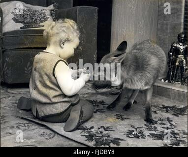1956 - That ''Foxed'' her.: Not everyone likes foxes whether they are tamed or not. Little Vanessa Price is an exception - Stock Photo