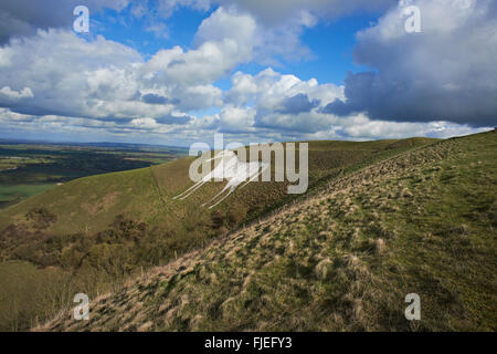 A landscape view of the White Horse at Westbury,  Wiltshire, - Stock Photo