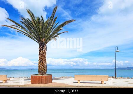 Palm tree, bench and lamp on the sea in Porto Santo Stefano travel destination. Argentario, Tuscany, Italy. - Stock Photo