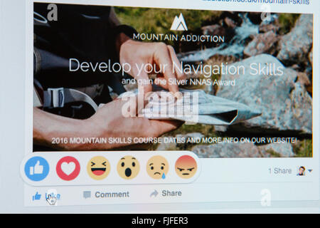 Close-up screenshot of Facebook website showing hand on LIKE with new reactions emoji on a business page. England - Stock Photo