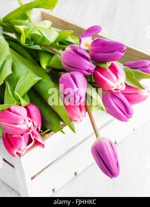 Purple and pink spring tulips in white wooden box - Stock Photo