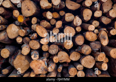Pile of wood logs ready for winter - wood logs background - Stock Photo