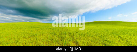 Rural panoramic background, rolling hill, cloudy sky and green fields landscape, Crete Senesi, Tuscany, Italy. - Stock Photo