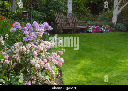 Clusters of pink and white tea roses by a lush green lawn with two rustic chairs waiting for you in the background. - Stock Photo