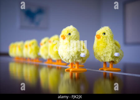 A wind-up baby chick toy. Concept: leadership, taking the first step, standing out from the crowd. - Stock Photo
