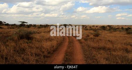 A dirt road path cuts through the Serengeti, Tanzania - Stock Photo