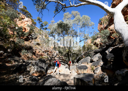 Standley Chasm, West MacDonnell Ranges, Northern Territory, Australia - Stock Photo