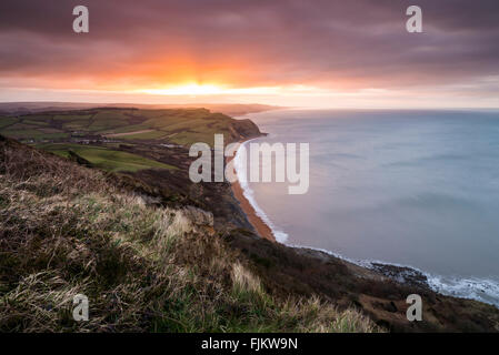 UK Weather, Golden Cap, Chideock, Dorset. 3rd March 2016. UK Weather: View along Dorset's Jurassic Coast looking - Stock Photo