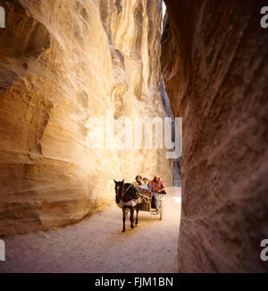 The Siq, the narrow slot-canyon that serves as the entrance passage to the hidden city of Petra, Jordan, seen here - Stock Photo