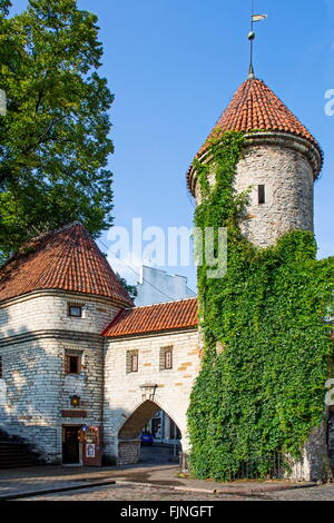 geography / travel, Estonia, Tallinn, old city gate, Viru Gate, entrance to the Lower city, Additional-Rights-Clearance - Stock Photo
