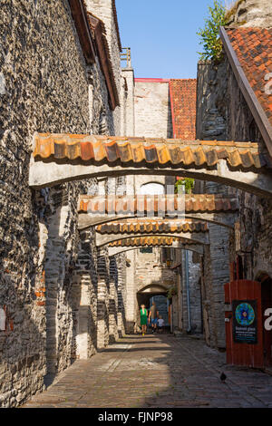 geography / travel, Estonia, Tallinn, St. Catherine Alley with medieval houses, Additional-Rights-Clearance-Info - Stock Photo