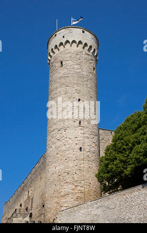 geography / travel, Estonia, Tallinn, tower of the castle on the cathedral hill, Additional-Rights-Clearance-Info - Stock Photo