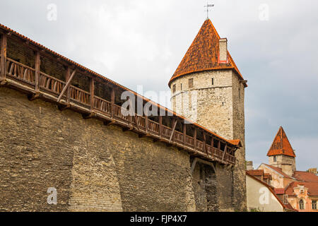 geography / travel, Estonia, Tallinn, medieval city fortifications with wall-walks and defense towers, Additional - Stock Photo