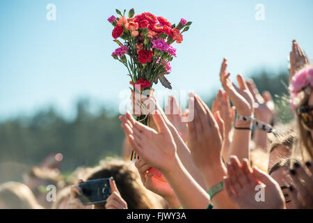 Cropped Hand Of Person Holding Carnation Flowers In Crowd - Stock Photo