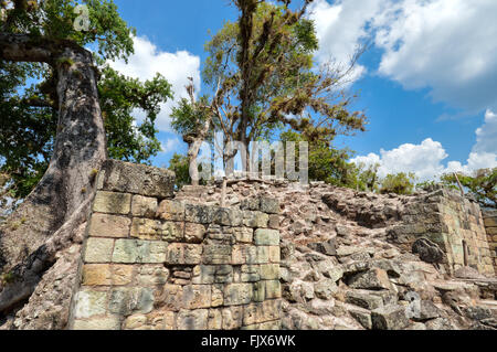 Structures and carvings of West court at Copan archaeological site, Honduras - Stock Photo