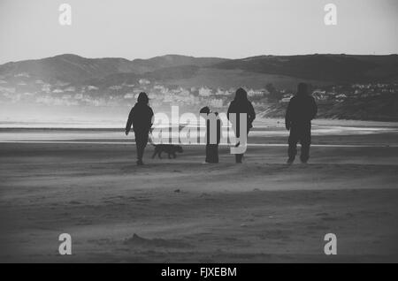 Silhouette Family With Dog Walking On Beach - Stock Photo