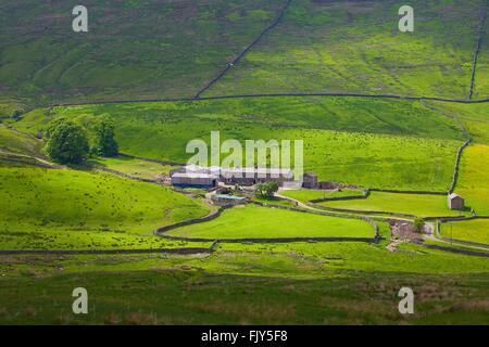 Yorkshire Dales National Park. Hill Farm. Duerley Bottom, Sleddale, Hawes, Yorkshire, England, United Kingdom, Europe. - Stock Photo
