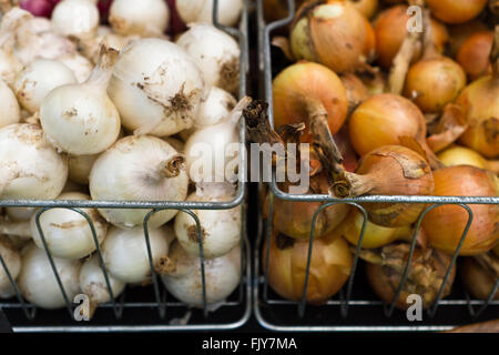 Freshly picked onions in baskets at outdoor farmers market - Stock Photo