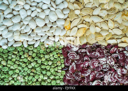 Assortment of different kind of seeds. Dried white beans, green peas, red beans, white seeds of pumpkin. - Stock Photo