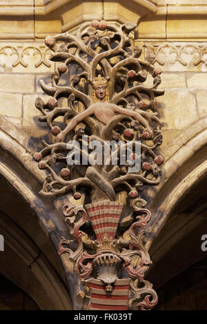 Tree of the knowledge of good and evil with snake 16th century, Halberstadt Cathedral or Church of St. Stephen and - Stock Photo