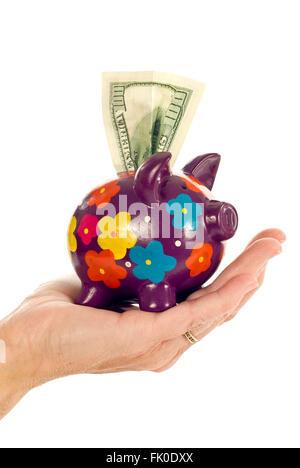 Prosperous Piggy - Stock Photo