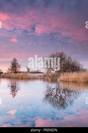 Pink clouds reflected in the still waters of the river Ant on the Norfolk Broads. - Stock Photo
