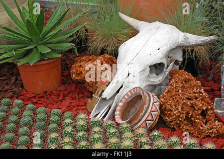 Cow skull as a decorative element in the garden - Stock Photo