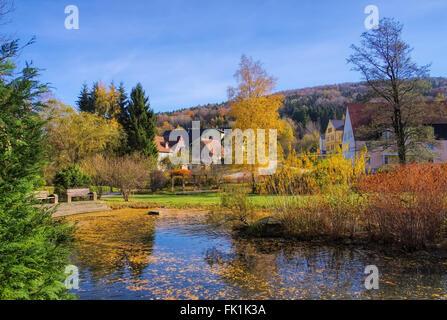 Jonsdorf Park im Herbst im Zittauer Gebirge - Jonsdorf Park in fall in Zittau Mountains - Stock Photo