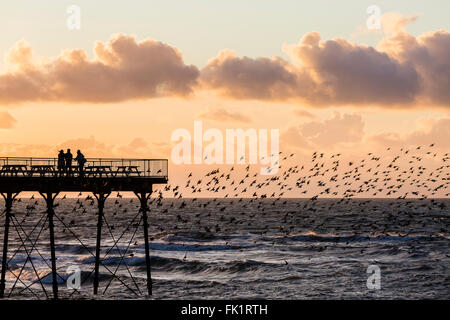 Aberystwyth, Wales, UK. 5th March, 2016. UK Weather. Th e sun sets south of the pier at Aberystwyth as the starlings - Stock Photo