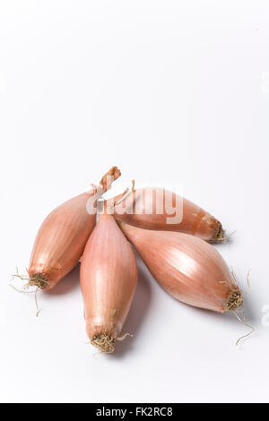 Four Fresh Echalion Shallots On White Background - Stock Photo