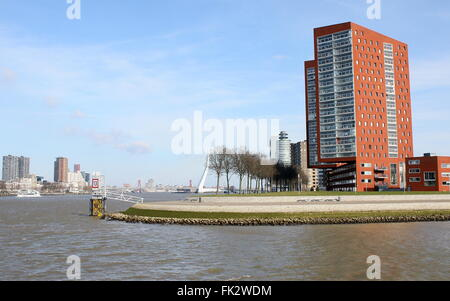 Modern high rise apartment complex on Katendrecht peninsula, Nieuwe Maas River, skyline Rotterdam, The Netherlands - Stock Photo