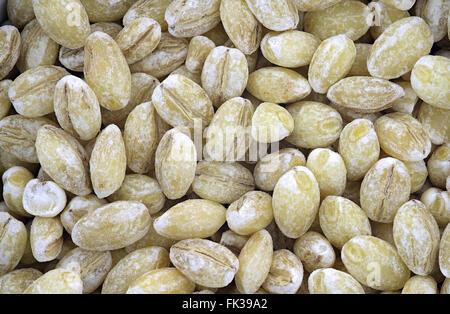 Estreme close up of pearl barley - Stock Photo