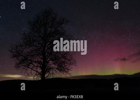 Aurora Borealis also known as the Northern lights was lighting up the night sky at Pontrhydfendigaid, Mid Wales - Stock Photo