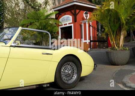 Rieds Auto show 2015 in Funchal Madeira. Austin Healey 3000 Six Classic car - Stock Photo