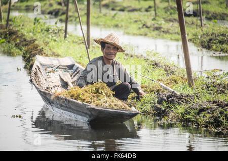 Farmers at the Floating Gardens at Inle Lake, near Nyaungshwe, Shan State, Myanmar (Burma), Asia - Stock Photo
