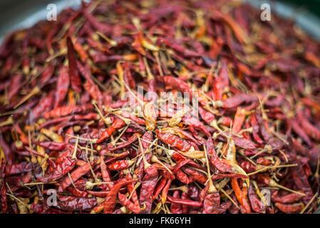 Chillies, Mrauk U market, Rakhine State, Myanmar (Burma), Asia - Stock Photo