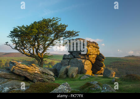 Saddle Tor, Dartmoor, Devon, England, UK - Stock Photo