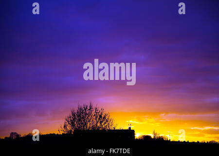 London, UK. 7th March, 2016. UK Weather: Stunning sunset over North London, silhouetting suburban tree and houses - Stock Photo