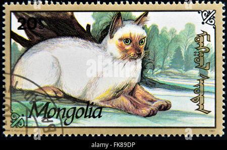 MONGOLIA - CIRCA 1991: stamp printed in Mongolia shows a cat, circa 1991 - Stock Photo