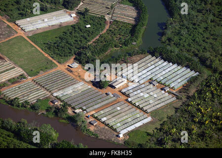 Aerial view of the horticultural production in the outskirts of town - Stock Photo