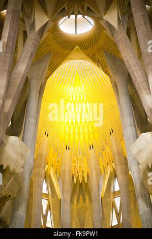 Inside view of the Basilica of the Sagrada Familia - Antoni Gaudi project - Stock Photo